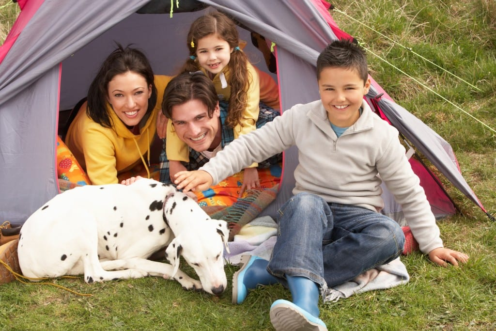 camping with pets 3