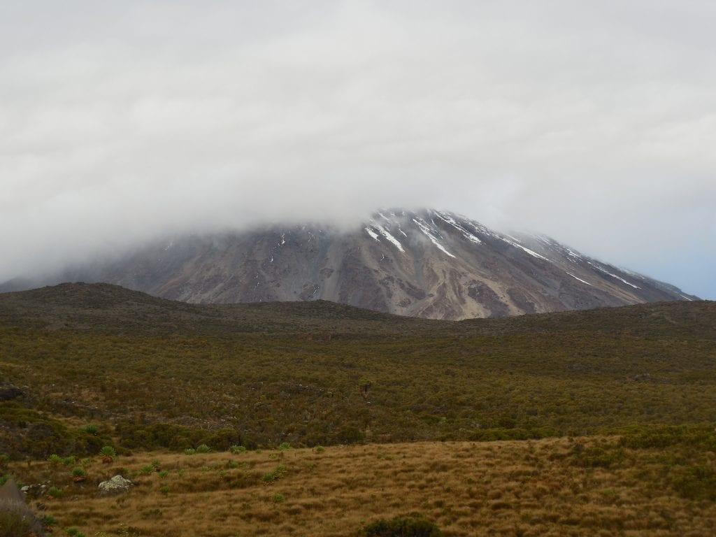 Kilimanjaro 19