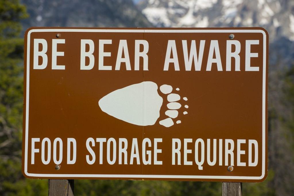 Avoiding Bear Problems 5