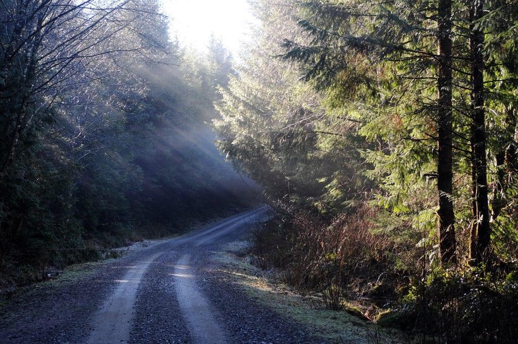 Oregon Lessons Part 1 - 1