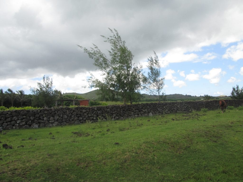 The natural beauty of Easter Island 18