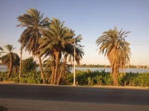 Cairo to Aswan 12