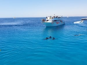 Red Sea Riviera 21