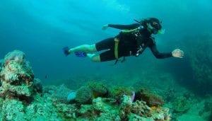Andaman Islands 4